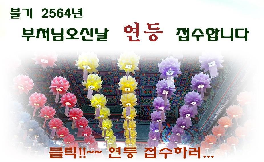 05485d2f7ec0c10c1d92ebf0a2b81eca_1585027612_0546.jpg